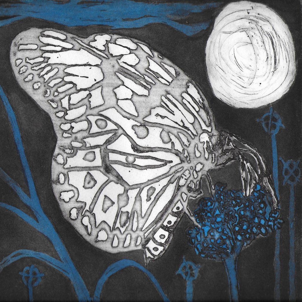 Etching Butterfly Dreams