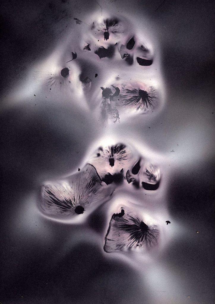 Mushroom Spore Print Enigma II