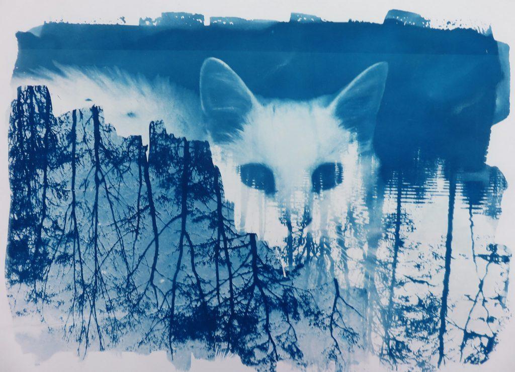 Reflections Cyanotype